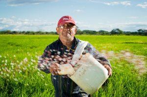 crop-insurance-uk